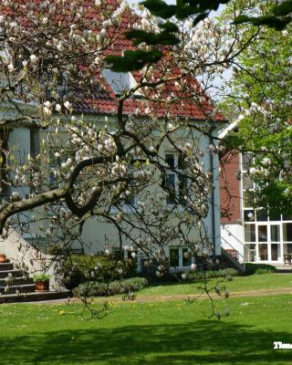 B&B Tiendegaarden Møn