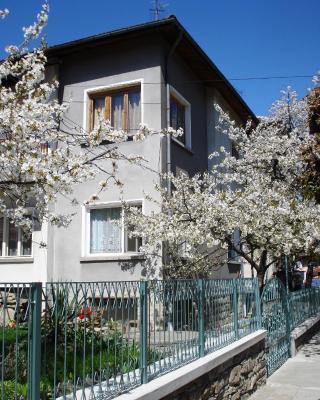 Guest House Minkovi