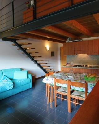 Casa Pesarina