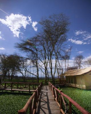Kiboko Luxury Camp