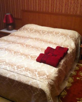 Mini Hotel Dudkino