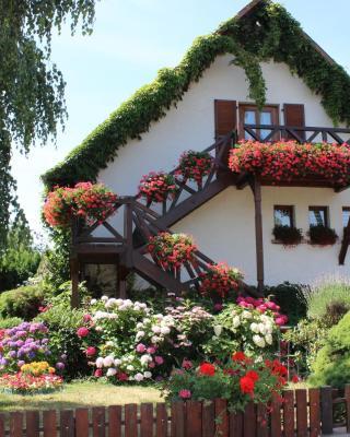 Apartment Route du Vin Centre Alsace