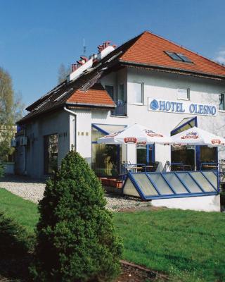 Hotel Olesno