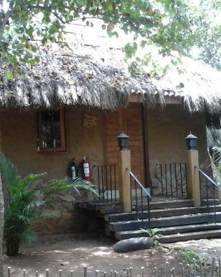 Elephant Safari Hotel - Udawalawa
