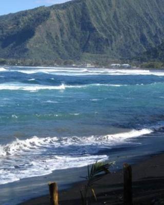 タヒチ サーフ ビーチ パラダイス