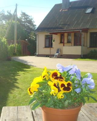 Singing sands Apartment in Saulkrasti