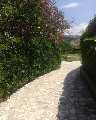 Guest House Venera