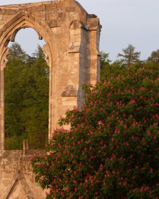 Ferienwohnungen Klosterblick