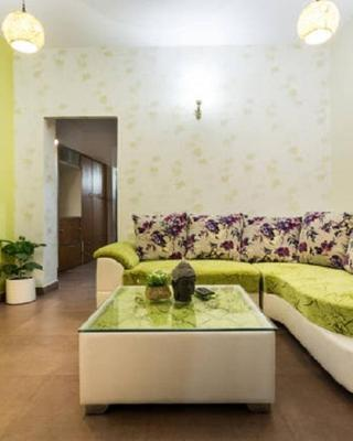 Bright and Green Apartment
