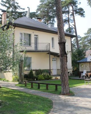 Apartment on Meža prospekts