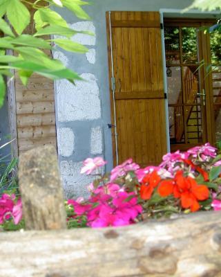 Serenella fontaine Et Coquelicots