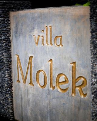 ヴィラ モレック