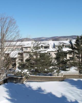 Pinnacle Condominiums