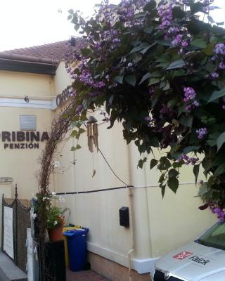 Penzión Pribina Nitra
