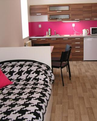 Apartment Třeboň