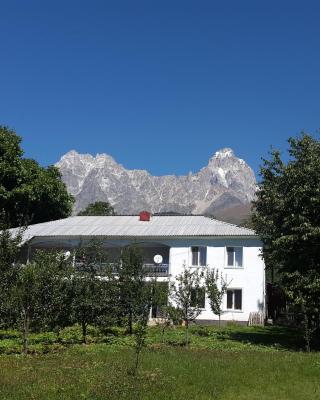 Guest House Vivaushba