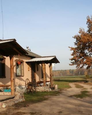 Shadrin Village House