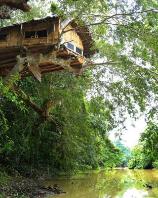 Kumbuk Tree House