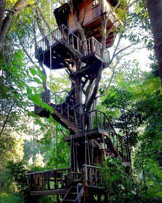 Rabeang Pasak Tree House