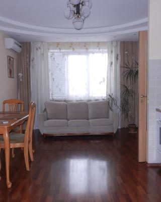 Apartment On Revolutsii 1905 Goda