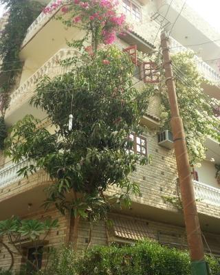 Royal Apartments Luxor
