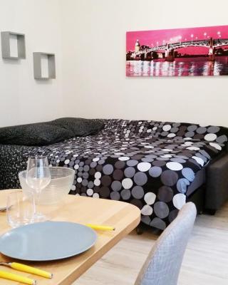 Appartement Toulouse Saint-Cyprien