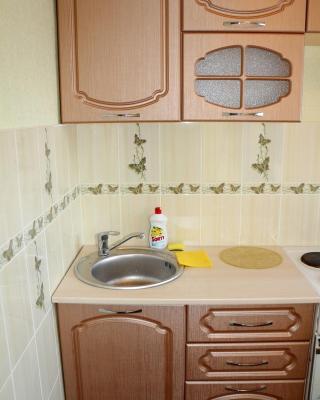 Baikal Apartment Vokzalnaya 14