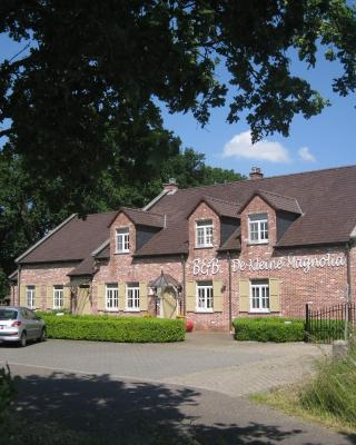 Bed & Breakfast De Kleine Magnolia