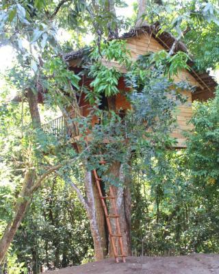 Tree House-Midigama