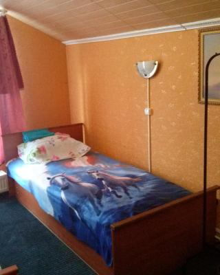 Guest House na Vyborgskom Shosse