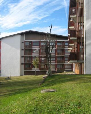 Apartment Eisenhauer in Schluchsee