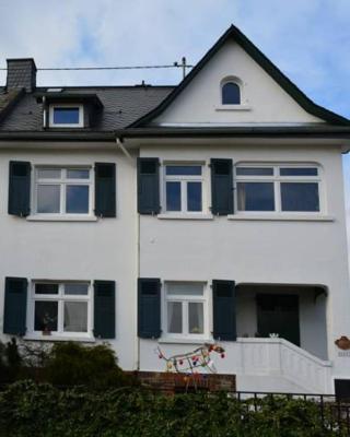 Haus zum Rhein