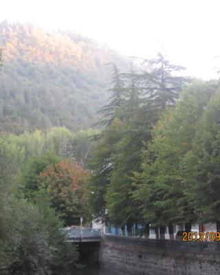 Country House Borjomi