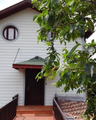 Vira Creek House