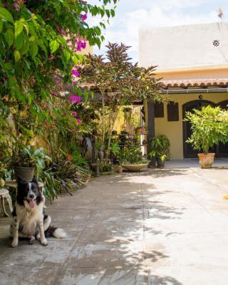 Suíte no jardim - Praia dos Anjos