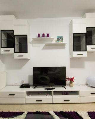 Cozy Apartment near Citadel