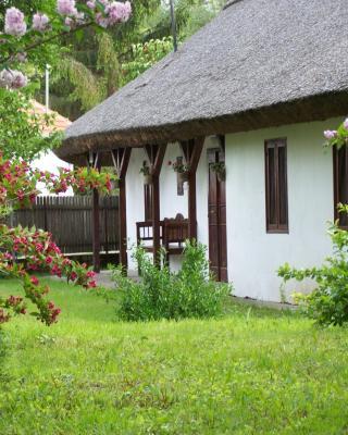 Nádfedeles vendégházak