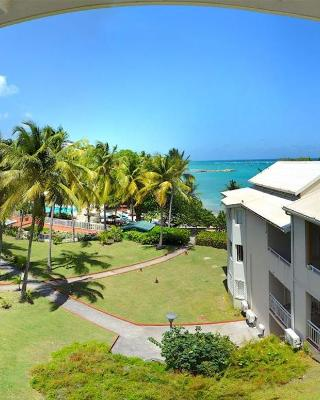French Caribbean Dream
