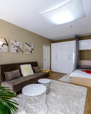 Poltavsky Apartment