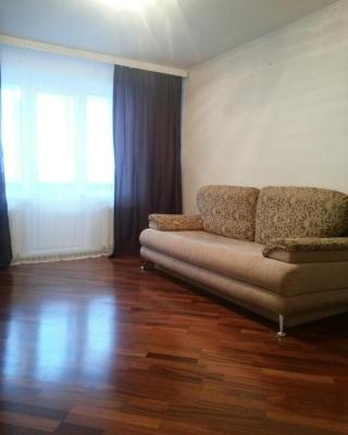 Apartment Vinogradova 2