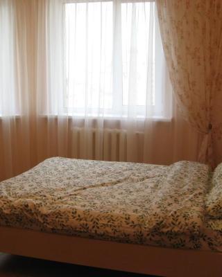Apartments on Sovetskaya 95