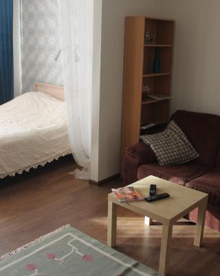 Apartment Krasnoarmeyskaya 100