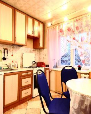 Apartment On Dargomyzhskogo 20