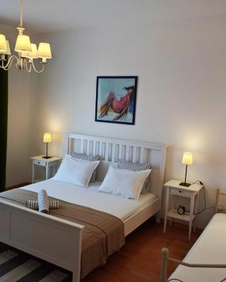 Luxury Apartment Delišan