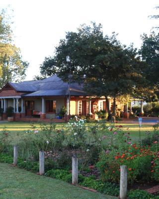 Drakensberg Terrace