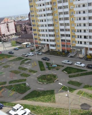 Apartment Fadeeva 425