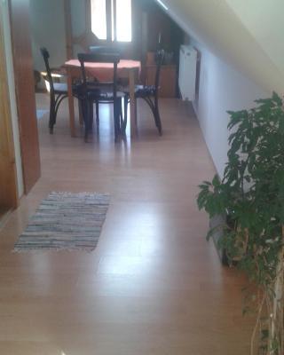 Apartment Adare