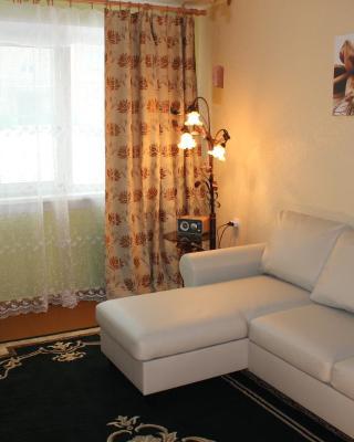 HB Snow Apartment