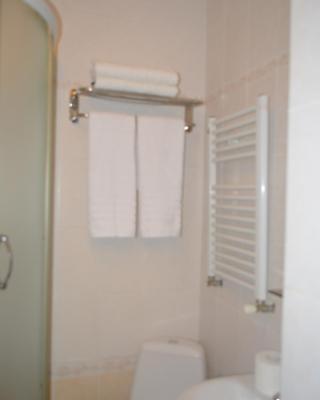 Aliona Apartment