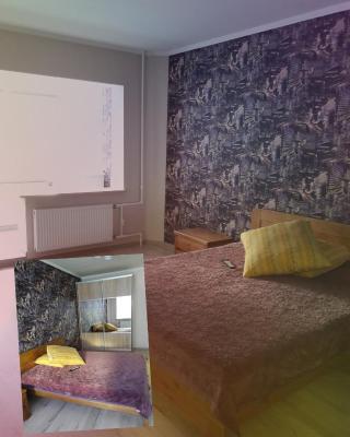 Apartment on Tarashchanska 161